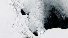 Wiosna w pełni na Antarktydzie